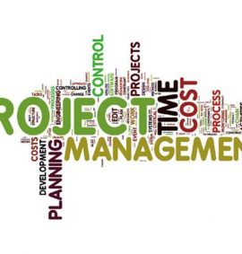 projectmanagement4